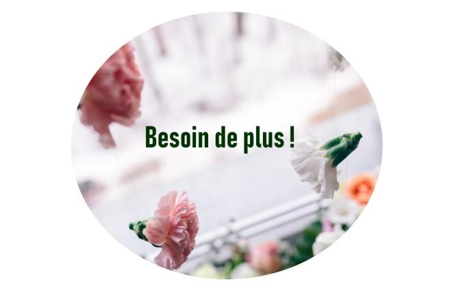 BESOIN DE PLUS